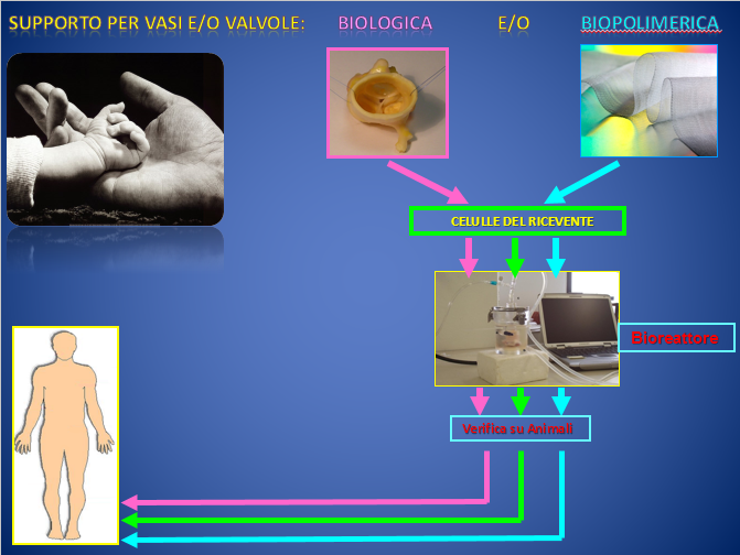 foto-dainese-valvole-ricreate-in-laboratorio