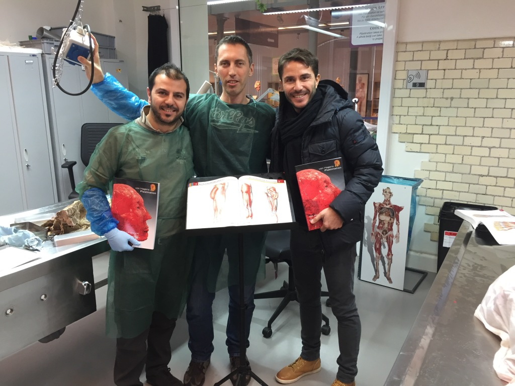 anatomia-in-mano-4