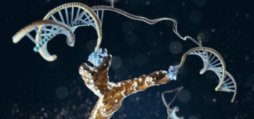 nanoswitch di DNA legato ad un anticorpo