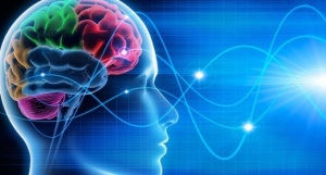 cervello-onde