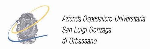 Bildergebnis für AOU Orbassano