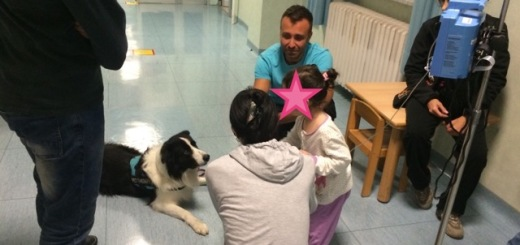 pet-therapy-santa-chiara-pisa-1