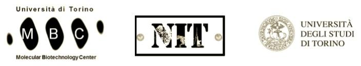 loghi-mbc-nit-uni-torino