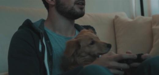 campagna-antifumo-veterinari-milano