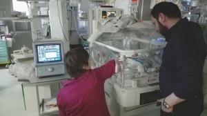 ventilatore-giulia-torino