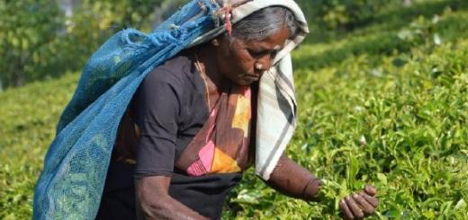 rapporto-azione-contro-la-fame