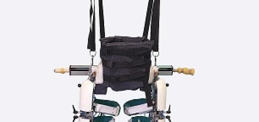 esoscheletro-pigro