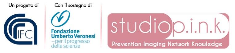 loghi-cnr-studio-pink