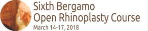 logo-sixth-bergamo-open-rhinoplasty-course