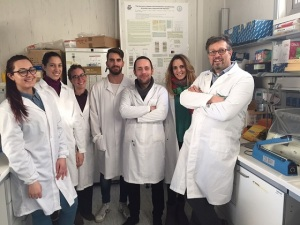 ricercatori-ceinge
