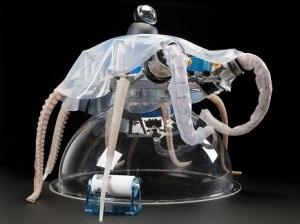 octopus-primo-robot soffice-progetto-cecilia-laschi