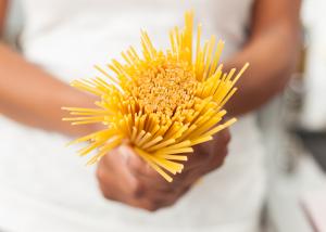 Pasta-world-pasta-day