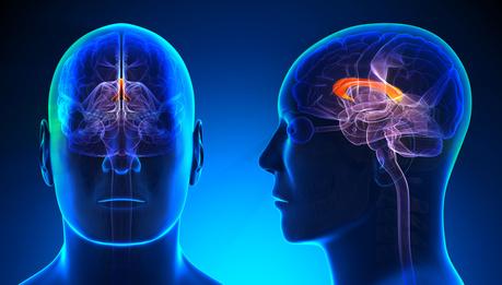 limpotenza del Parkinson