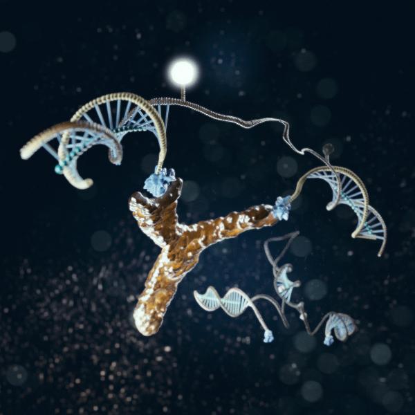 nanoswitch di DNA legato a un anticorpo