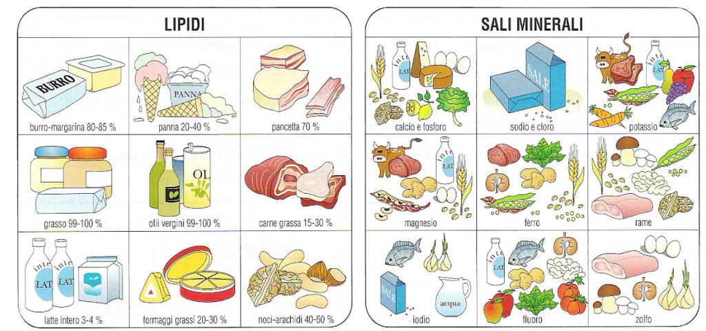 calorie-carlo-rinaldi-2