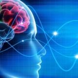cervello-onde-testa