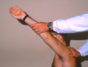 spalla-articolazioni