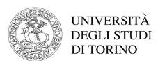 logo-universita-torino