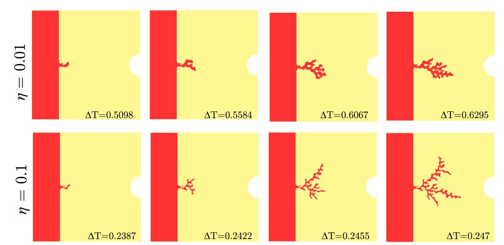polimi-immagine-nature-scientific-reports