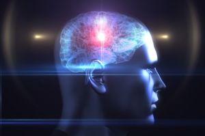 testa-cervello-3