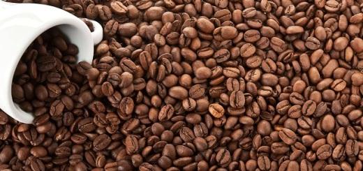 caffe-chicchi