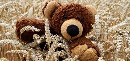 grano-orsetto-peluche