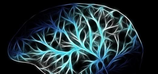 cervello-mappatura-testa