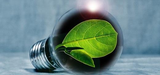 lampadina-energia-green