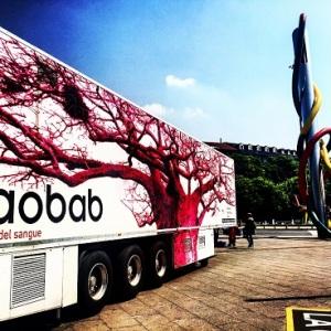 baobab-donazione-sangue