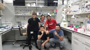 gruppo-kit-biotech-rna
