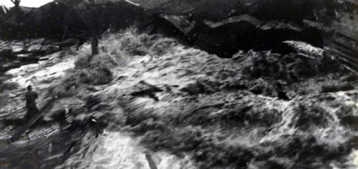 hilo-tsunami-1946-ingv