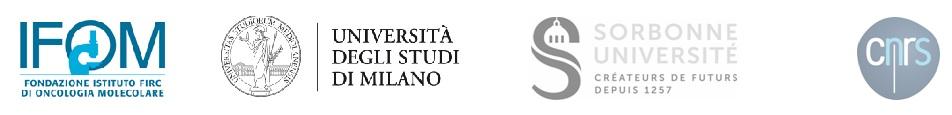 loghi-ifom-universita-milano-sorbonne-cnrs