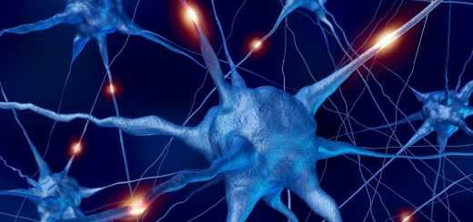 astrociti-cervello