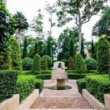 giardino-piante-verde
