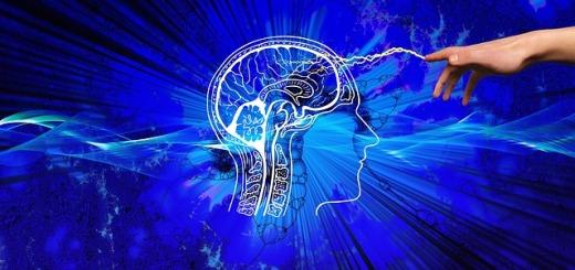 testa-cervello-blu