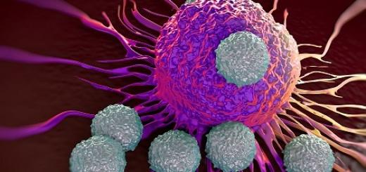 ieo tumore prostata