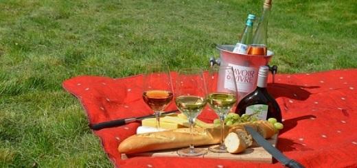 cibo-picnic
