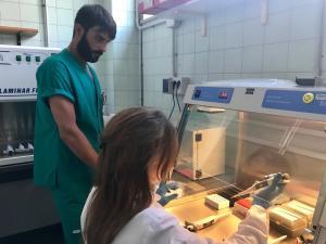 laboratori-anatomia-patologica-aosp-terni