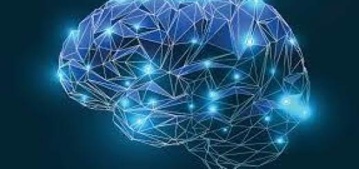 connessioni-cerebrali-mostra-torino