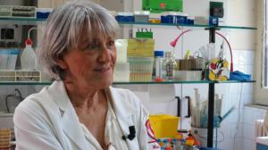 prof-stefania-stefani-microbiologia
