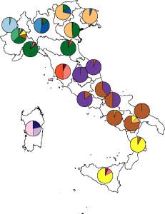 studio-dna-italiani-uni-pavia-e-torino-figura-1