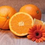 arance-agrumi-frutta