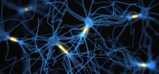 cervello-neuroni-blu